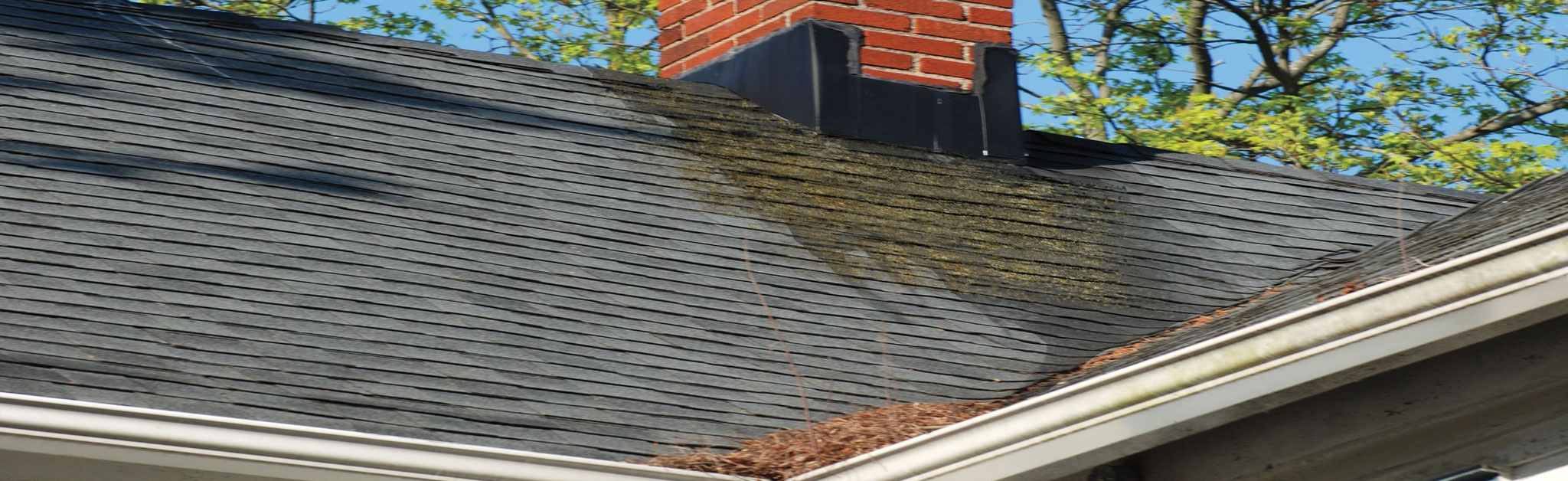 Ruck Roofing Images